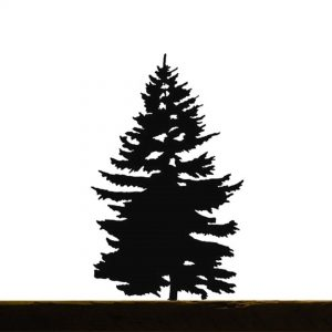 AD produzione privata alberi in scala di massimo de lucchi