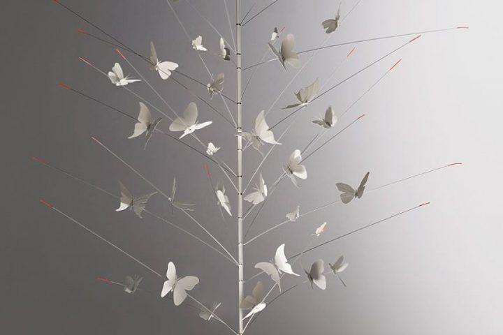 festa delle farfalle